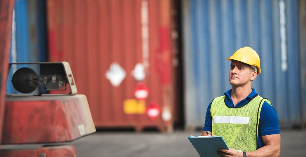 Export Check Up Analisi Preliminare